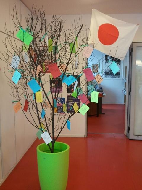 Notre arbre a de nouvelles feuilles...