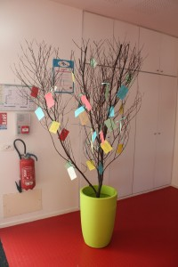 Une trentaine de poèmes après, notre arbre feuillit doucement !